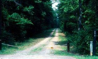 burma road photo4820000116587515953..jpg